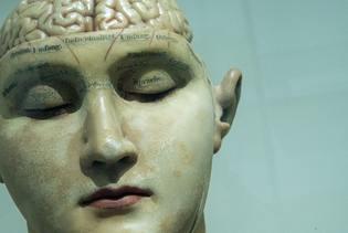 brein.jpg