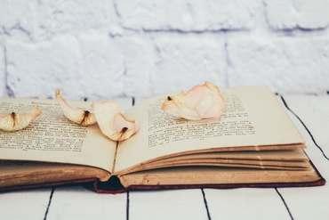 boekmetblaadjes.jpg